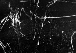 Galeria Asymetria: Jak fotografia łączy się z poezją?