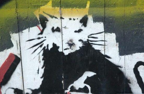 Jeden ze szczurów Banksy'ego na ulicach Liverpool'u