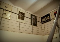 Galeria-pracownia Academia Nova, fot. Kama Wróbel