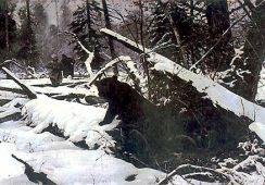 Julian Fałat – mistrz zimowych pejzaży