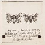 """Magdalena Sawicka, """"Jedwabniki"""", miedzioryt, 21x22 cm, Onamato/artpower.pl"""