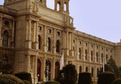 Intrygująca kunstkamera w Wiedniu otwarta po 10 latach