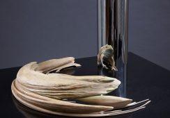 Rzeźbiarska iluzja w twórczości Jonty Hurwitza
