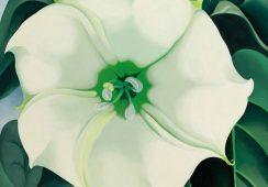 Dzieła Georgii O'Keeffe zostaną sprzedane