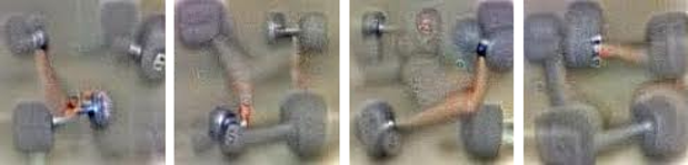 Dumbbells plus arm  Photograph Google