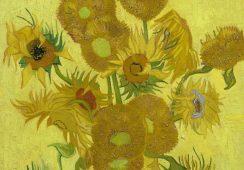 Słoneczniki van Gogha odzyskają pierwotny blask