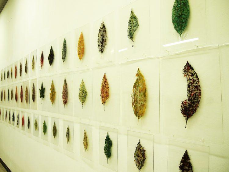 Yoshitaka Iwamoto, Leaves, 2012; źr.-yoshiiwamoto.com