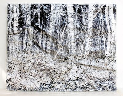 Francesco Pignatelli. Fragile 62, cm 158 x 200, Year 2007. C-Print, manipulated and enclosed in a Plexiglas showcase. Copyright F. Pignatelli