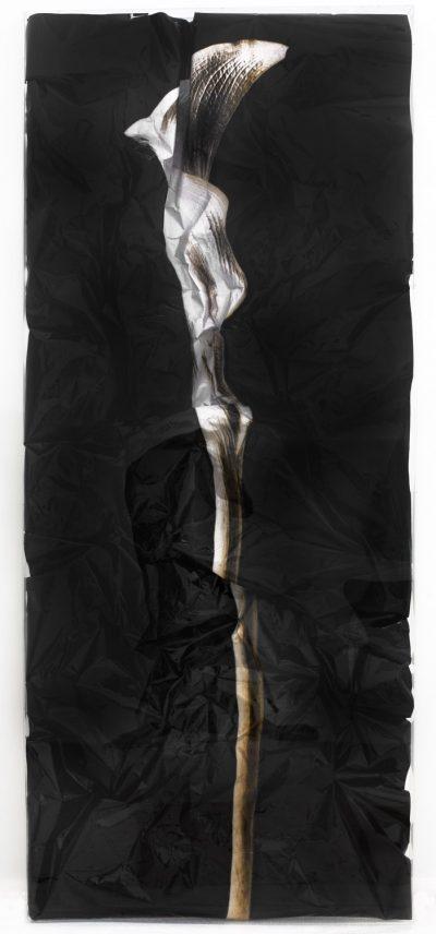 Francesco Pignatelli. Handle with care 4, cm 250 x 108 x 8, 2008. C-Print, manipulated. Copyright F. Pignatelli