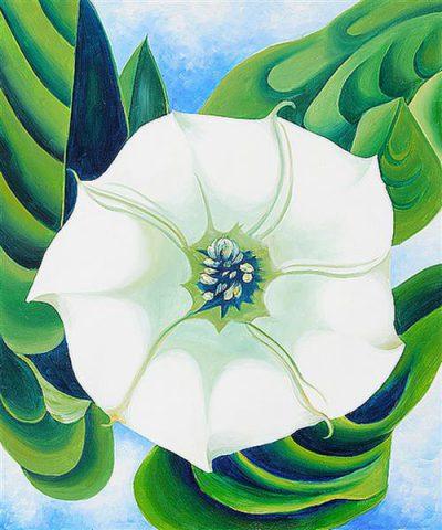 """Georgia O'Keeffe, """"Jimson Weed"""", 1932."""