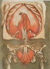 Związki medycyny ze sztuką